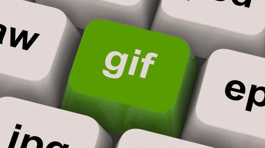 recover-lost-gif-file