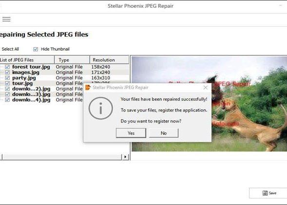 JPEG Repair Grey Area